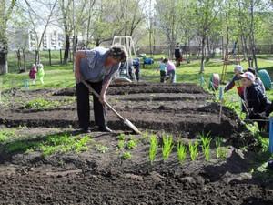 Как ухаживать за огородом весной