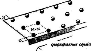 Схема посадки для разных сортов отличаются