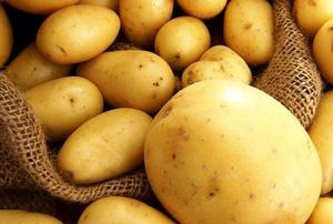 Правильная посадка картошки