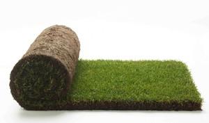 Правила использования газона
