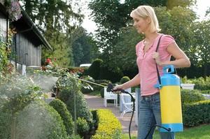 Правила и способы обработки садов табачной пылью