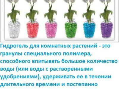 Что такое гидрогель для растений